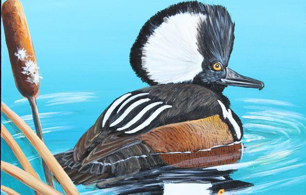 Audubon Center Welcomes Junior Duck Stamp Art Exhibit