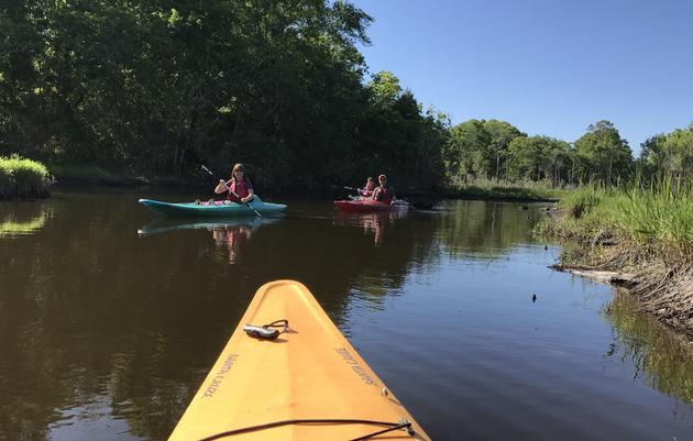 Bayou Kayaking
