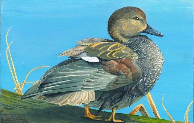 2018 Junior Duck Stamp Exhibition