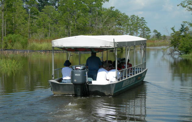 McCoys Swamp & River Tours